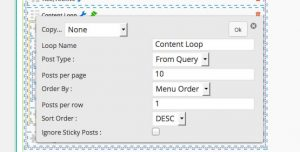 Example Loop Options Panel