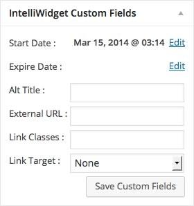 Custom Fields Detail