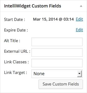 Custom Fields Detail